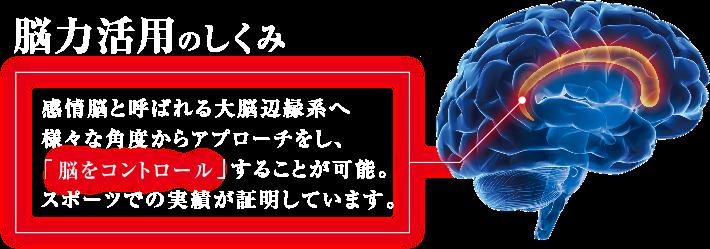 脳力活用のしくみ 感情脳と呼ばれる大脳辺縁系へ様々な角度からアプローチをし、「脳をコントロール」することが可能。スポーツでの実績が証明しています。
